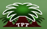 Three Palm Trees Trading Group Co Ltd